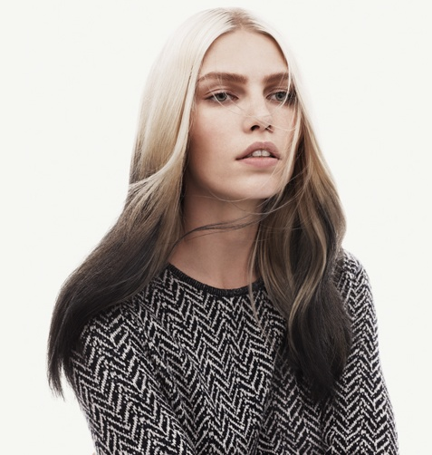 Model (Ombre Hair: Light to dark)