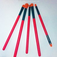 Docolor Brushes x Neon Peach Makeup Brush Set